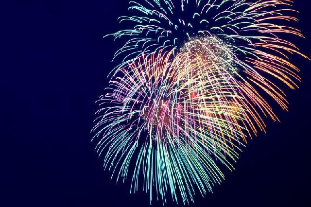 caes-contra-fogos-artificio