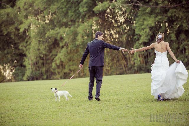 Como fazer o cãozinho participar do seu casamento