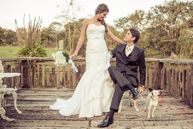 Cachorros participam do casamento de seus donos