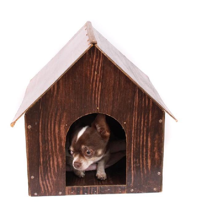 casinha-madeira-para-cachorros