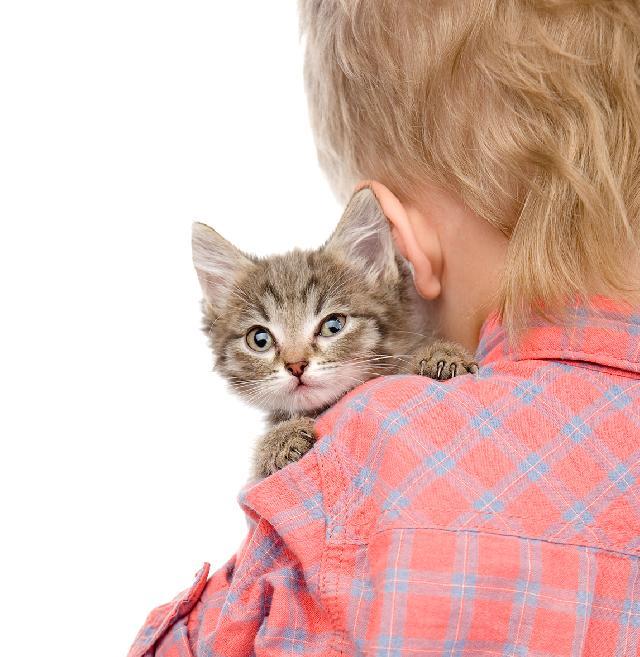Crianças e gatos