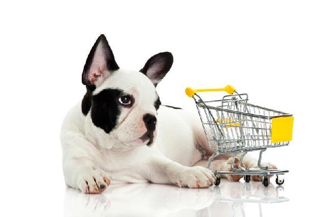 itens-pet-shop