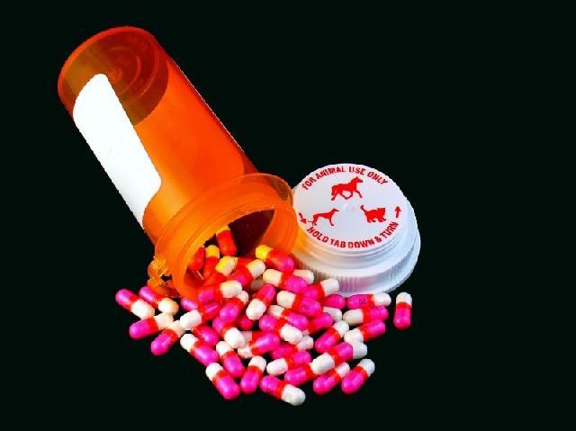 medicamentos-caninos