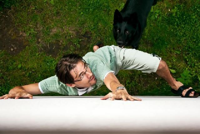 medo-cachorro