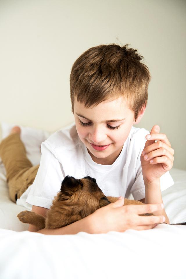 Melhor cachorro para crianças