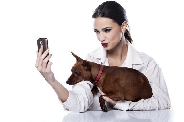 Monitoração de cães feita pelo celular