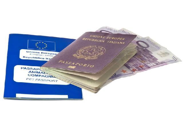 passaporte-cachorros