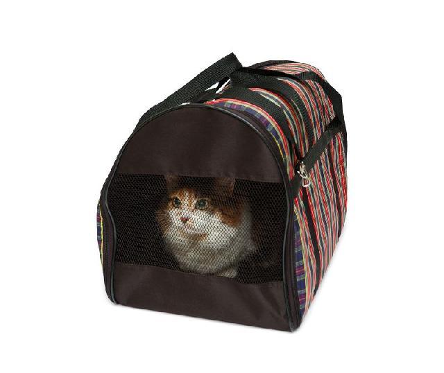 viajando-com-gato