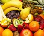 Frutas para Cachorros - Posso dar ao meu pet?
