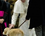 Cachorros vão para o céu, segundo o papa Francisco