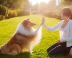Zooterapia - Pets ajudando no tratamento de pessoas