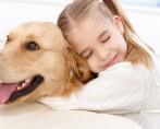 Funerária para Animais - Conforto em um momento difícil