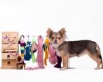 Roupas para cães – Quais tecidos utilizar?