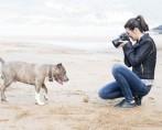 Fotos de cachorros – Seu pet no foco das atenções