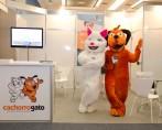 CachorroGato é destaque na terceira edição da PET Rio Expo
