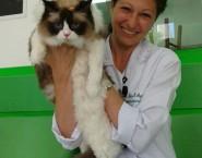 PELE PET - Dermatologia veterinária