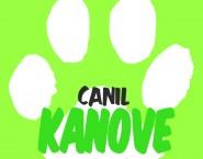 Kanove