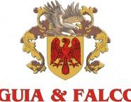 Águia e Falcon