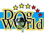 Dog World -  Parque Canino